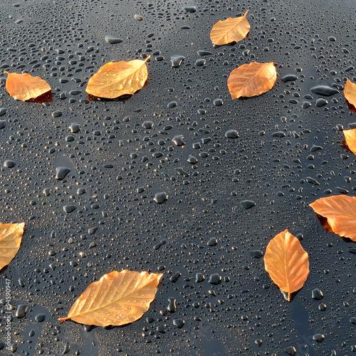 krople-wody-na-polerowanej-czarnej-farbie-samochodowej-z-listkami