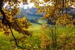 Fall in Czech Republic