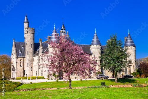 Foto op Plexiglas Antwerpen castles of Belgium - Marix, Bornem