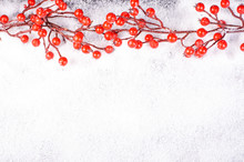 Christmas Branch With Red Berries On Snow. Christmas And New Year Decoration. Free Space For Text