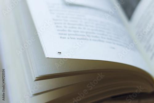 Valokuva  Libro abierto / Primerísimo plano de un libro abierto sobre el que camina una ho