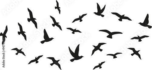 Flock of flying birds