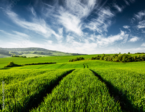 Cadres-photo bureau Jaune Green fields of Moravia