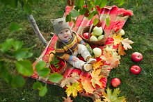 Little Cute Boy With The Harvest