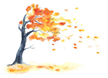 Watercolor Autumn Tree With Ye...