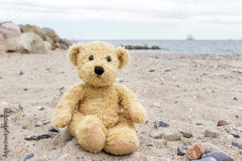 obraz PCV teddy bear / A teddy bear sits on a stone on the Baltic beach