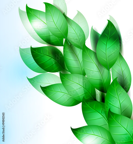 summer or spring vector illustration