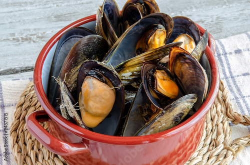 Fotografering  Mussels in the shell
