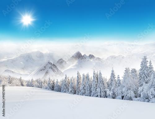 zimowy-sniezny-krajobraz