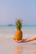Female hand holding a pineapple on blue sea background