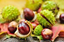 Fresh Chestnuts On Background ...