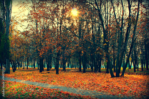 Deurstickers Herfst Солнечный осенний день