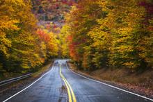 Brilliant Fall Floiage Colors ...