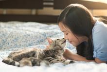 Beautiful Asian Girl Kissing American Shorthair Cat