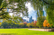 Buildings and foliage in Central Park, Manhattan