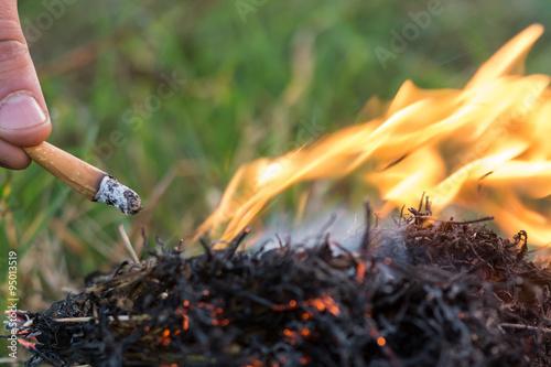 Fotografie, Obraz  Cigarette causing a dangerous fire on the forest