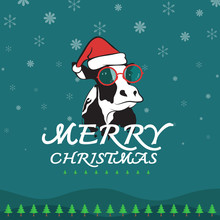 Vector Merry Christmas Greeting Cow Card On Dark Blue Background
