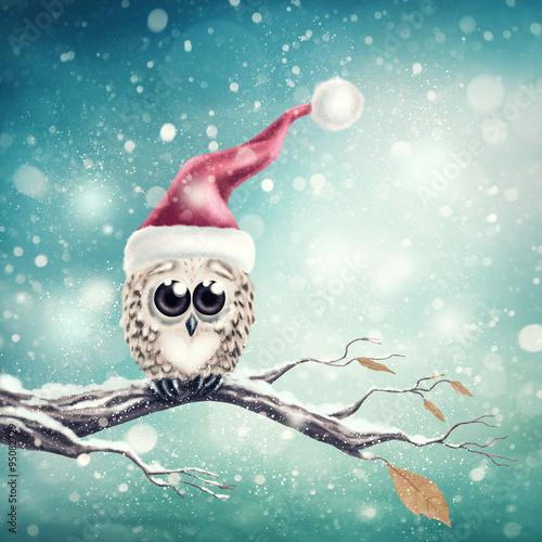 Canvas Prints Owls cartoon Little snow owl