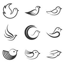 Set Of Birds.Vector Illustration
