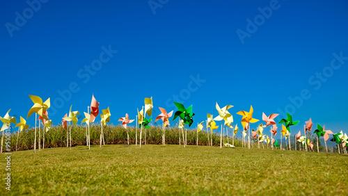 windmill Canvas-taulu