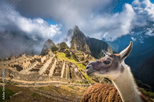 Staande foto Lama Machu Picchu, UNESCO World Heritage Site. One of the New Seven W