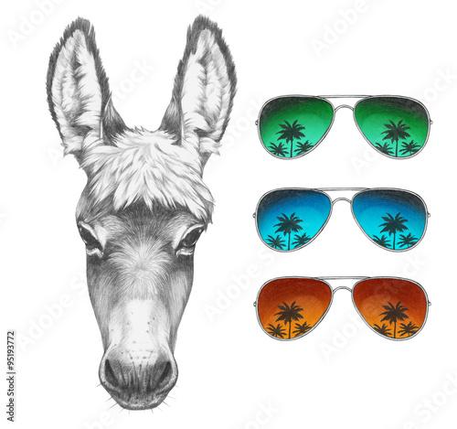 Photo Portrait of Donkey with mirror sunglasses