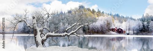 Aluminium Prints Dark grey Tree in winter landscape
