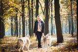 Fototapeta Zwierzęta - young beautiful female having fun with siberian husky in autumn park