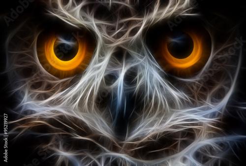 Canvas Prints Owls cartoon Owl Bird Face Close Up