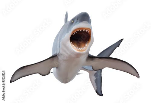 Fotografie, Obraz  Fierce great white shark isloated on white