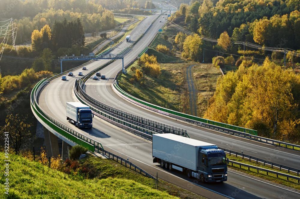 Fényképezés Asphalt highway with electronic toll gates in autumn woodland