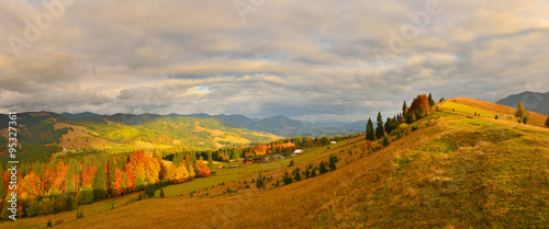 Tuinposter Wijngaard Autumn countryside
