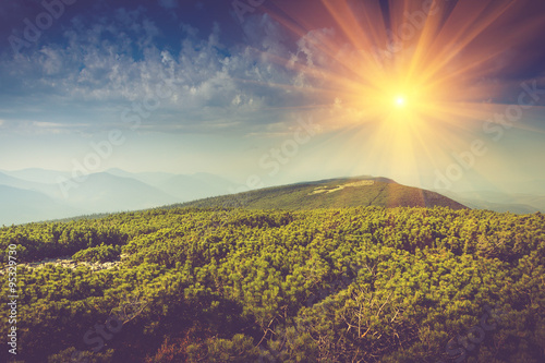 Canvas Prints Hill Mountains top covered by forest and sky with clouds in sunlight.