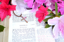 Easter Scripture And Cross With Bright Pink Flowers