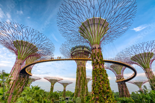 Spoed Foto op Canvas Singapore Gardens by the Bay - Singapore