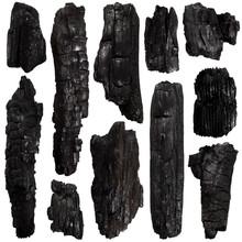 Set Of Burnt Bark Tree