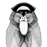 ilustracji wektorowych z abstrakcyjną małpą - 95371747