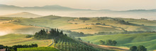 Summer Landscape Of Tuscany, I...