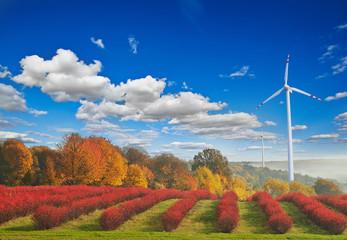 Panel Szklany Podświetlane Wiejski Turbiny wiatrowe na tle jesiennego krajobrazu