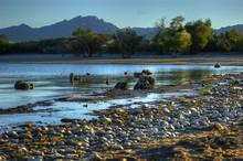 Lake Mohave National Recreatio...