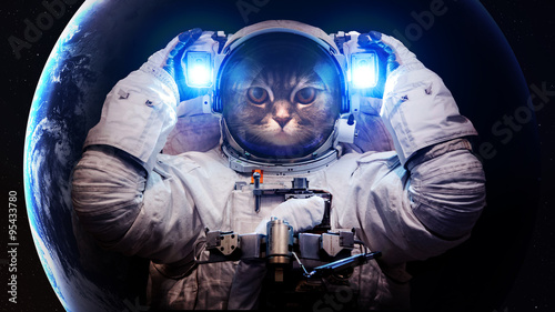 Poster de jardin Chat Beautiful cat in outer space. Elements of this image furnished by NASA