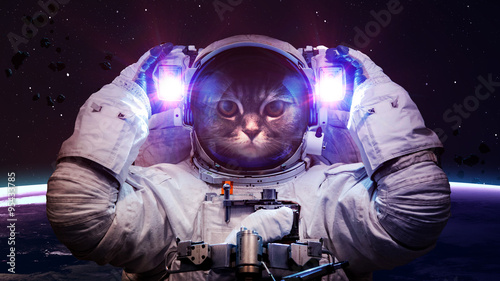 Tuinposter UFO Beautiful cat in outer space. Elements of this image furnished by NASA