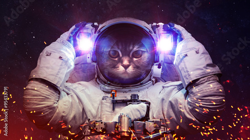 Canvas Prints UFO Beautiful cat in outer space. Elements of this image furnished by NASA