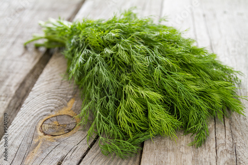 Fototapeta Dill bunch on rustic wood background