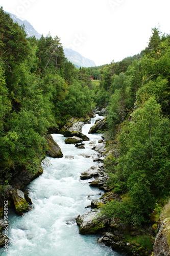 Printed kitchen splashbacks Forest river Gebirgsfluss in Norwegen