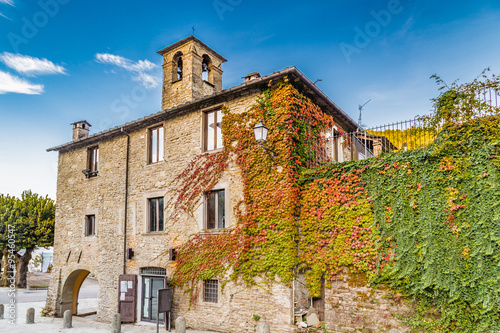 Boston Ivy in mountain village in Tuscany