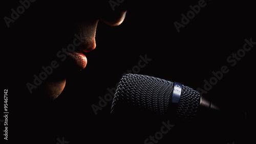 Fotografie, Obraz  Microphone And Singer