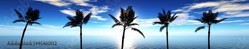 Fototapeta Morska panorama z palmami