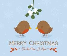 Robin Love Christmas