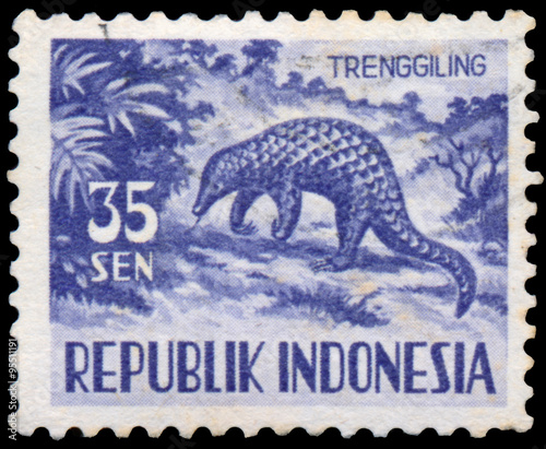 Valokuva  Stamp printed in Indonesia, shows Manis javanica